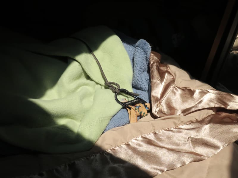 Bed S Shaped Carabiner Hooked Into The Fabric Loops