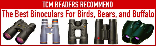 Best Binoculars For Camping