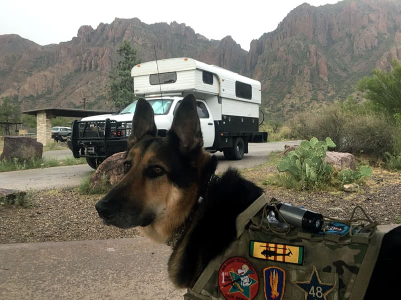 Big Bend, Texas with Toby the dog