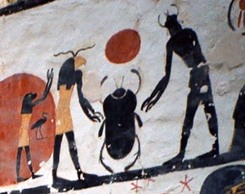 Black-Tank-Beetles-Egyptian