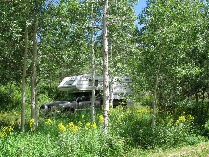 Campground On Flat Tops Scenic Trail Colorado