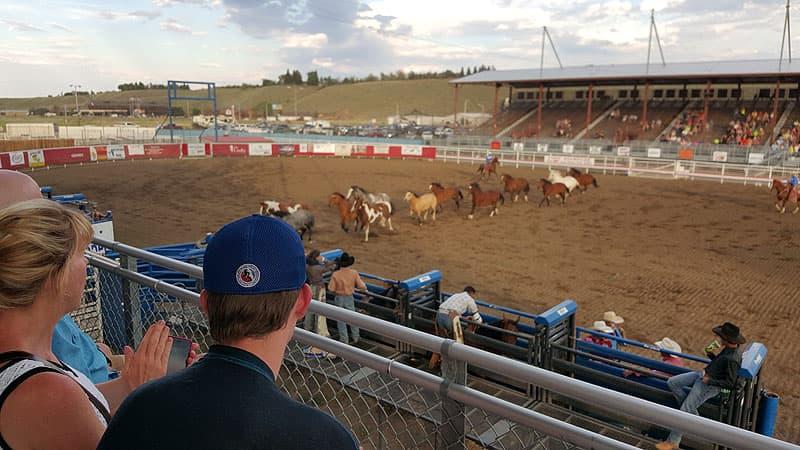 Cody Rodeo in Wyoming