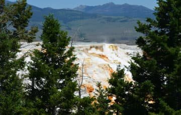 Mammoth Hot Springs in Yellowstone 2015
