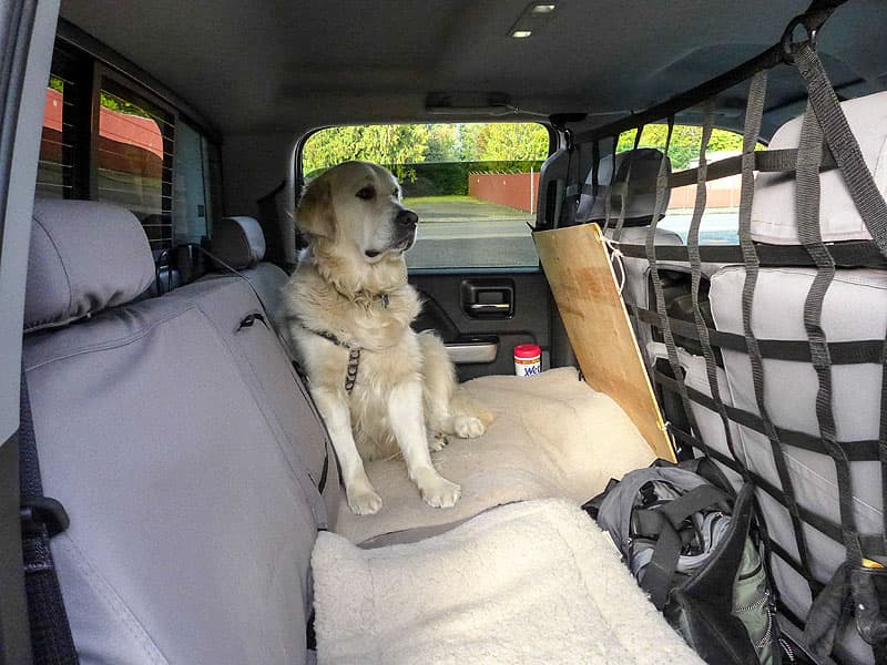 Dog netting protects the dogs in the truck