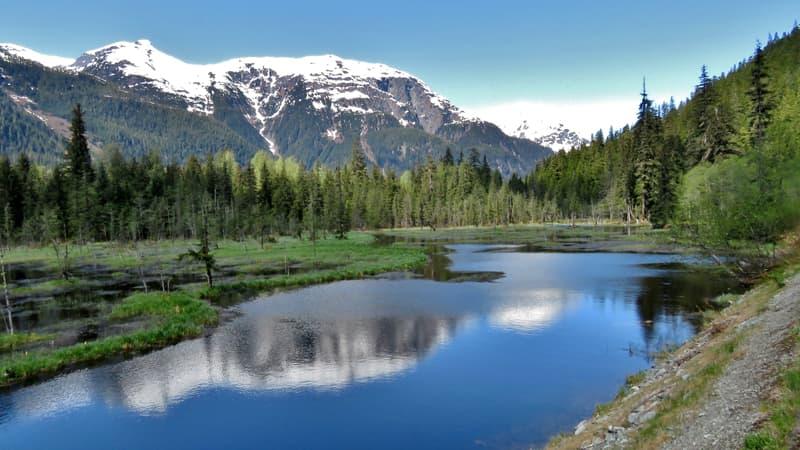 Fish Creek, Hyder, Alaska scenery