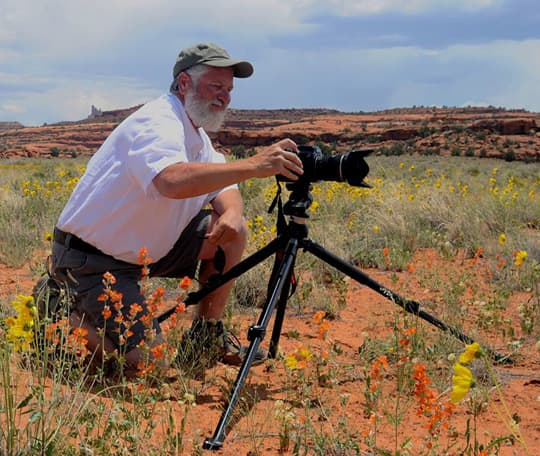 full-time-rv-Desert-Wildflowers-in-Canyonlands-National-Park