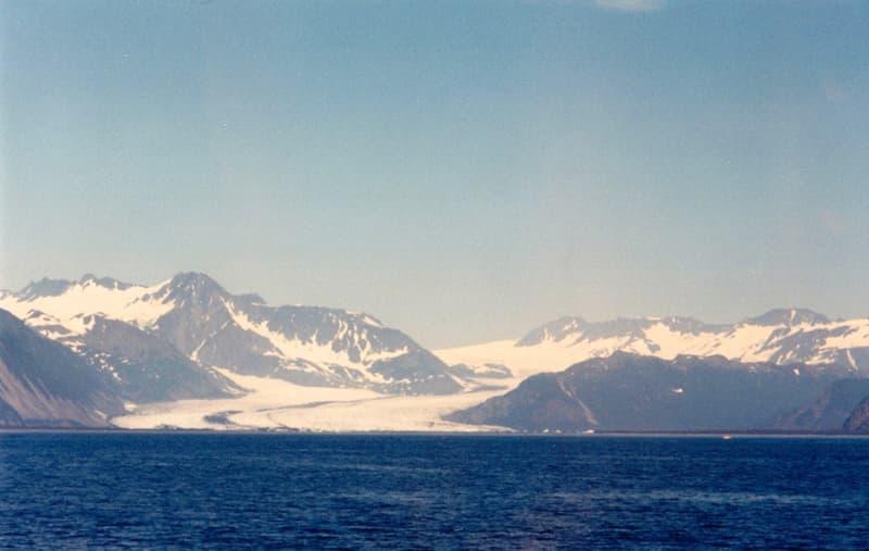 Glacier whale watching cruise out of Seward, Alaska