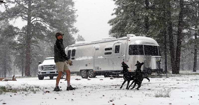 Airstream in Grand Canyon forest