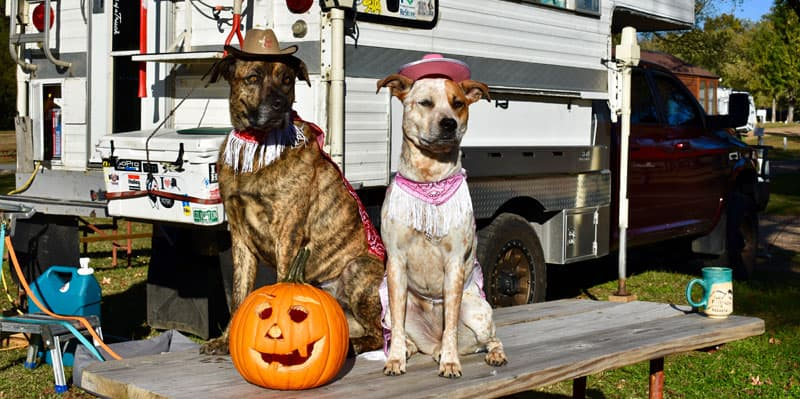 Halloween In Nashville Tennessee