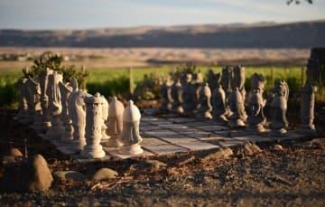 Vineyard Camping Chess Board
