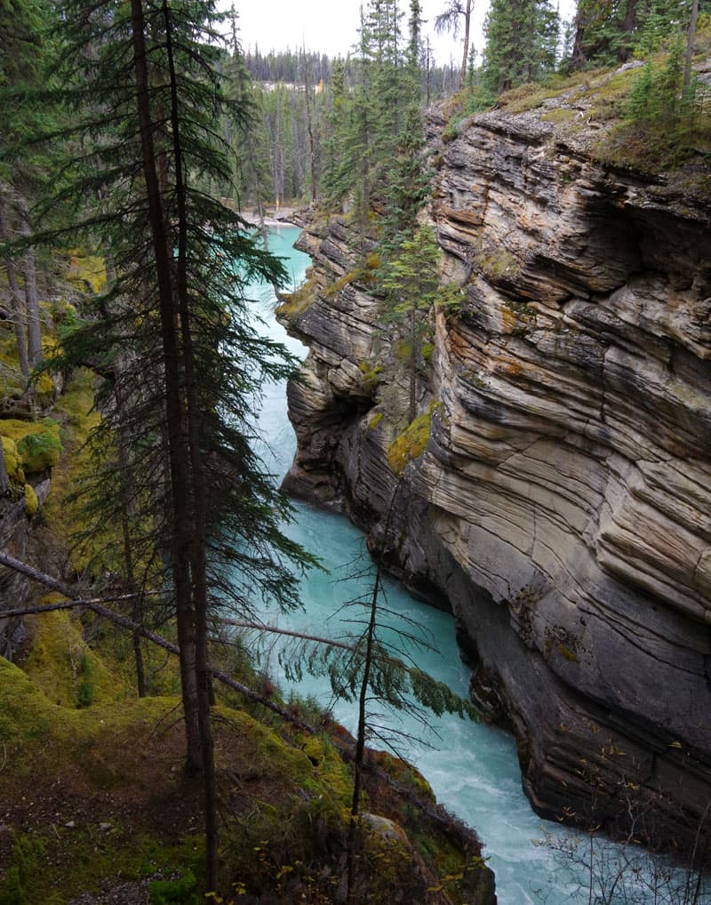 Icefields Parkway at Athabasca falls