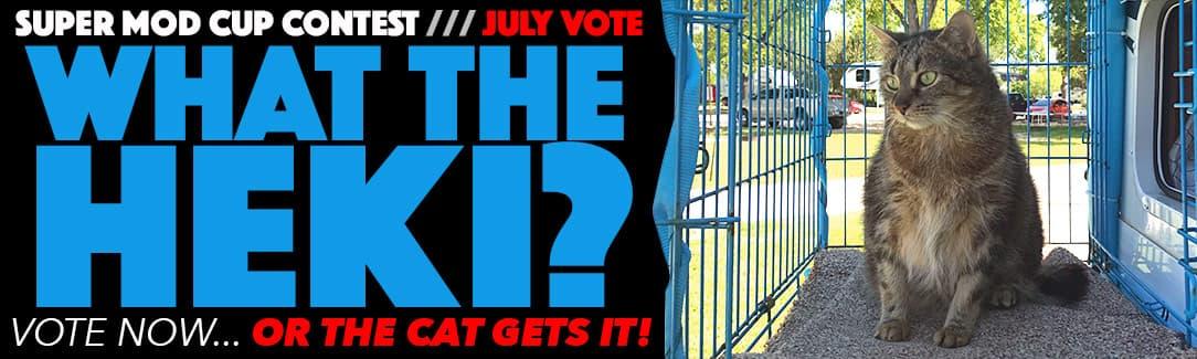 July 2017 mod vote