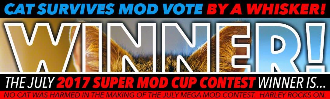 July 2017 mod winner