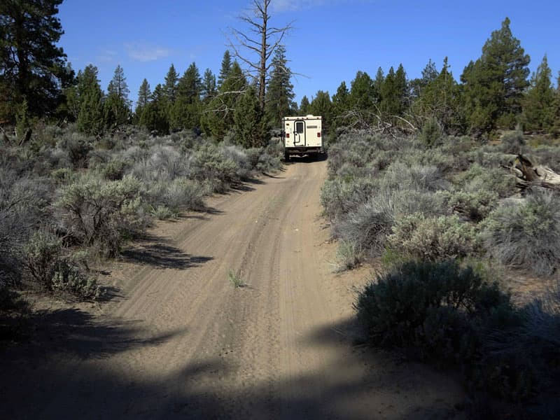 The Lost Forest in Christmas Valley, eastern Oregon