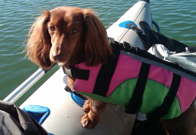 Mati with a life preserver