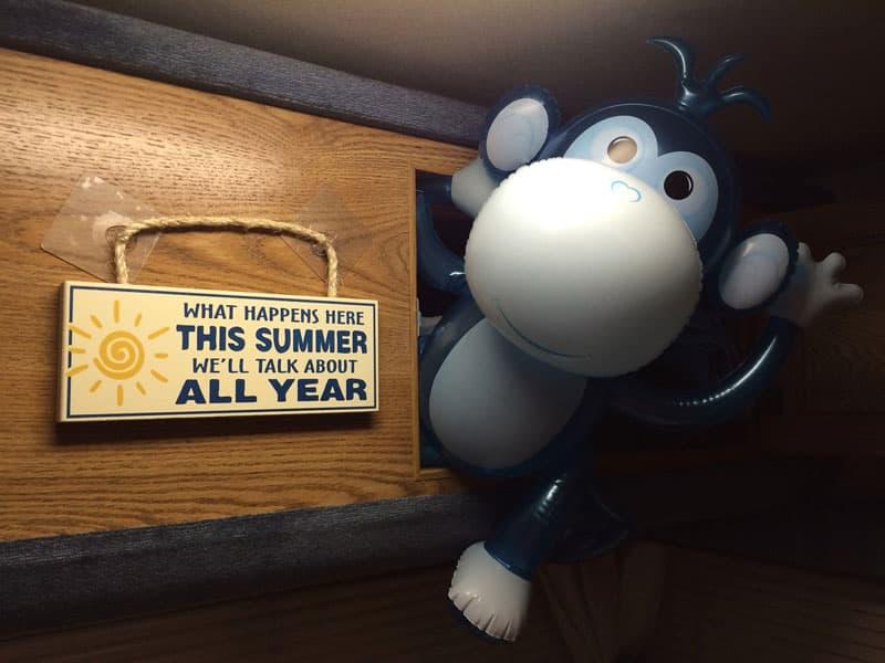 Monkey hanging camper