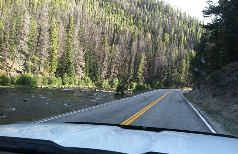 Montana Highway 43 Forest River