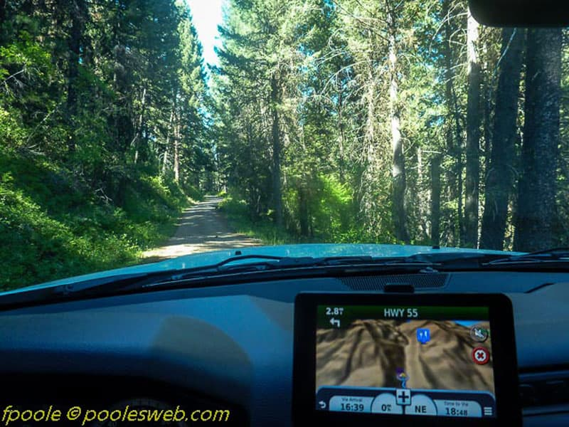 National Forest Service Road 101