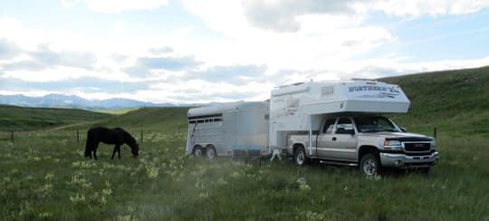 horse-camping-dry-camping