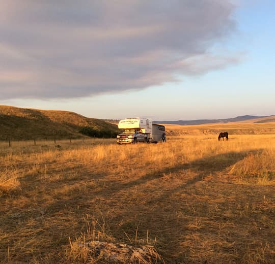 horse-camping-old-man-river-valley