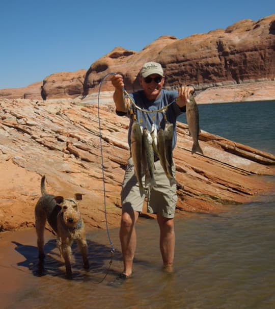 snake-aversion-lake-powell-fish