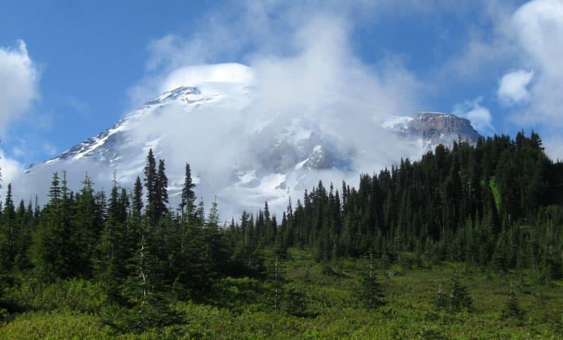 Ohanapecosh campground near Mt. Rainier
