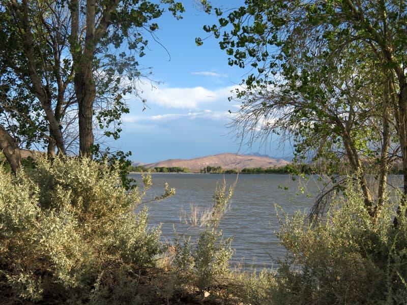 Pahranagat Lake, Nevada