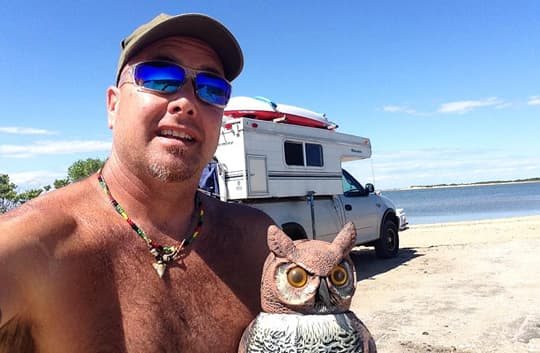 Palomino-pop-up-beach-owl-jeff