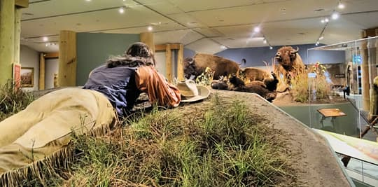 Wyoming-Buffalo-Bill-Museum