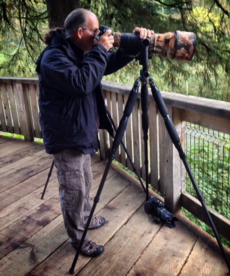 Bear platform for photographers in Hyder, Alaska
