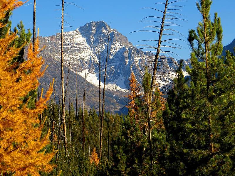 Glacier National Park, Quartz Lake Trail