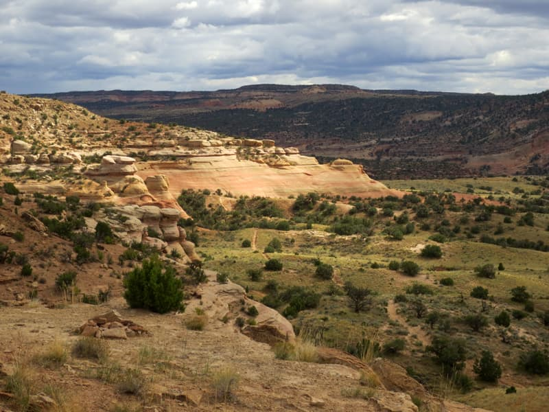 Rabbit Valley BLM land in Utah