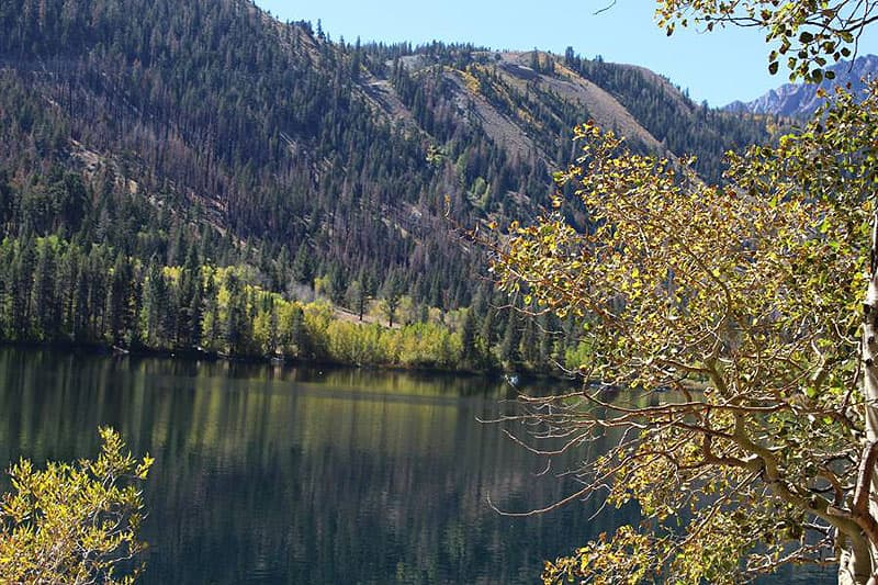 June Lake area along Hwy 395, with the leaves