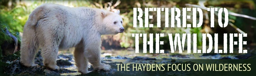 Professional Photographers Retired To Wildlife