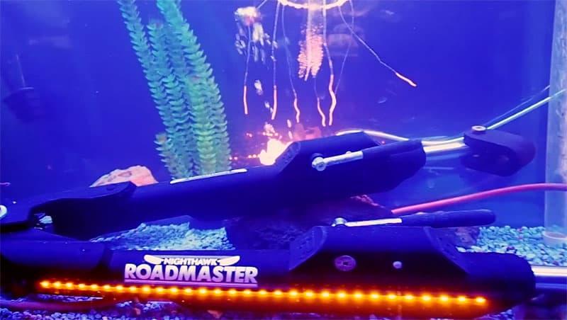 Roadmaster Nighthawk in fish tank