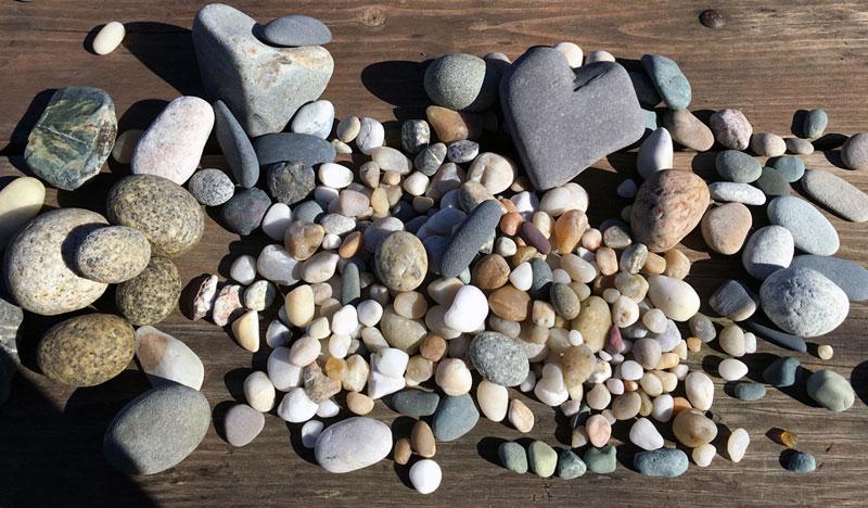 Rocks from Homer, Alaska