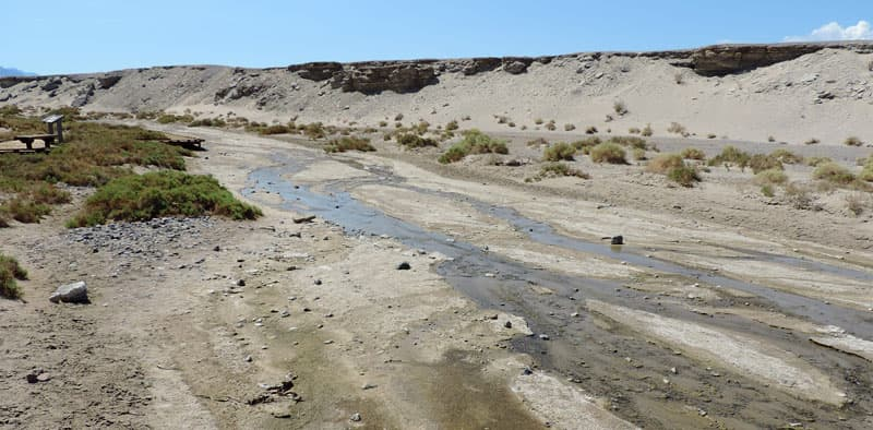 Salt Creek in Death Valley