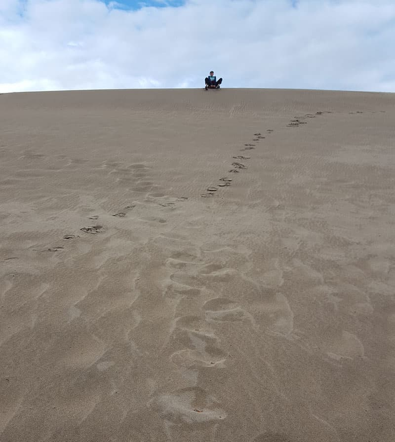 Sledding on the sand dunes