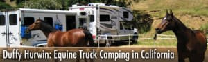 Equestrian Camping with Arabian Horses