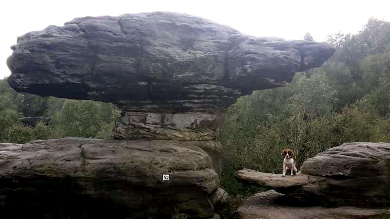 Tisa Sandstone Rocks