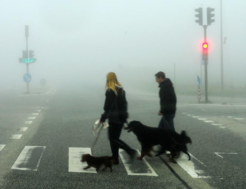 Fog on the beach Denmark