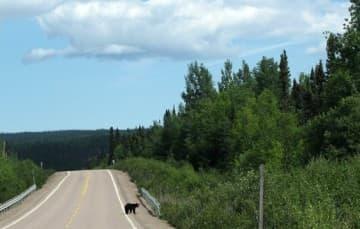Trans-Labrador-Highway Newfoundland