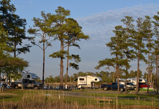mid-atlantic-tall-pines-harbor-campground