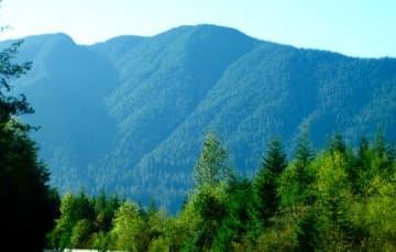 Vancouver Island, British Columbia Drive