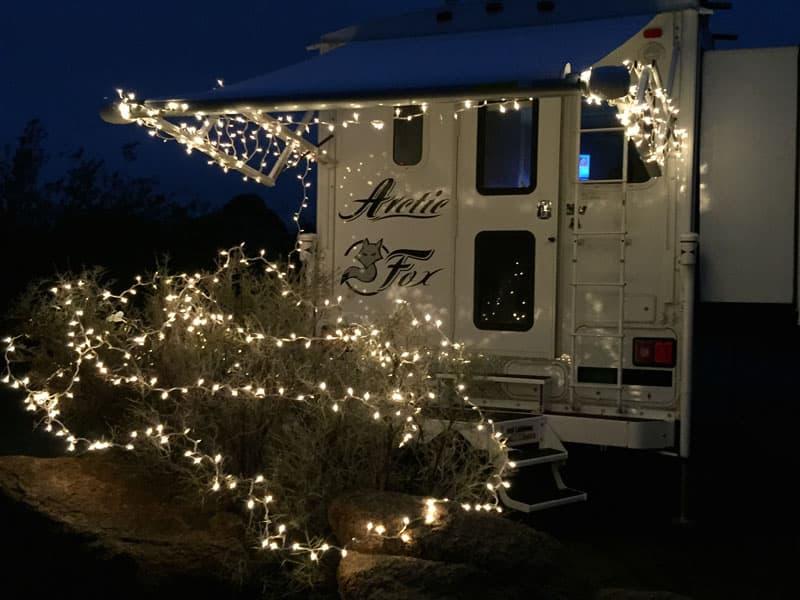 Arctic Fox Christmas lights