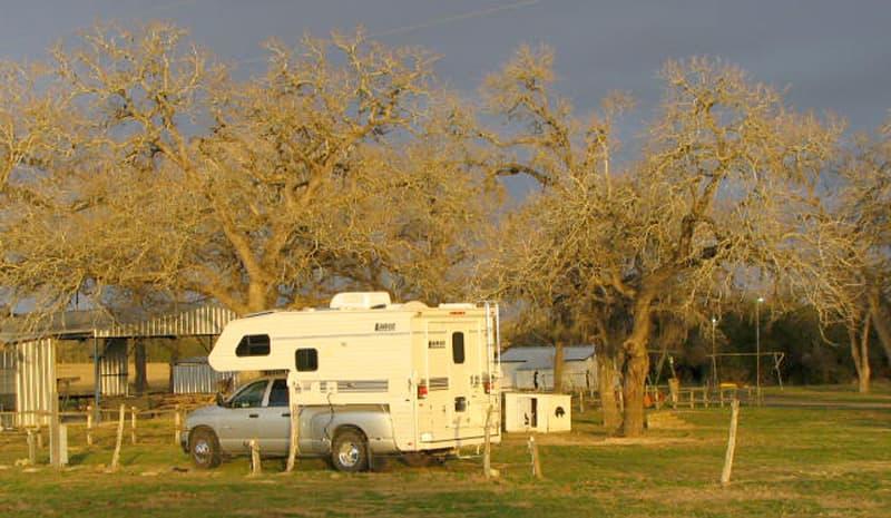 cattle-ranch-near-Cat-Springs-Texas