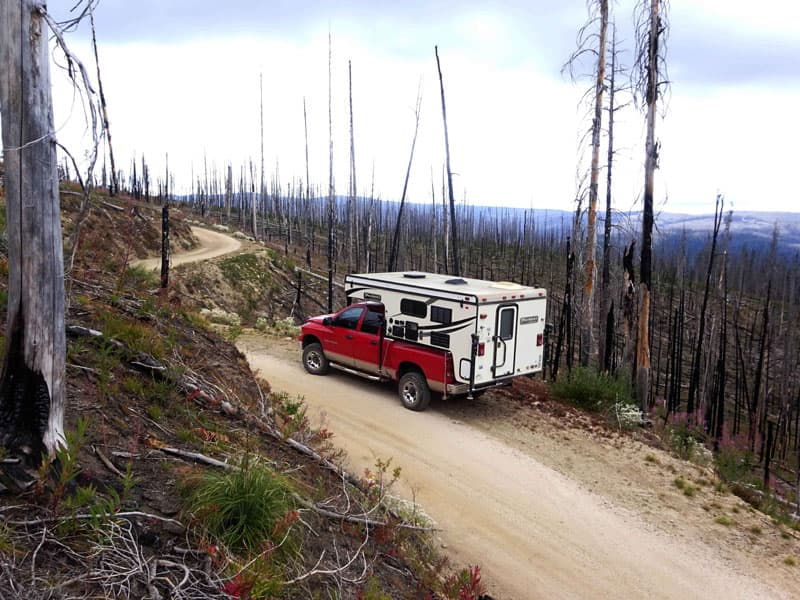 recent-forest-fire-area
