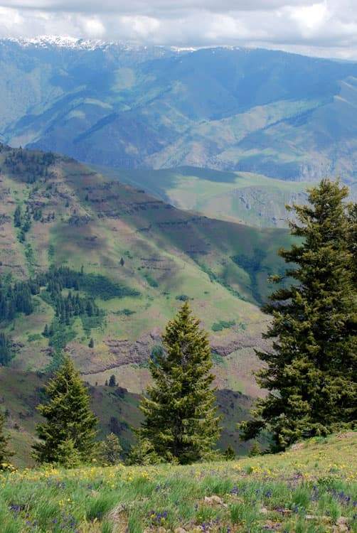 Hells Canyon Overlook in Oregon
