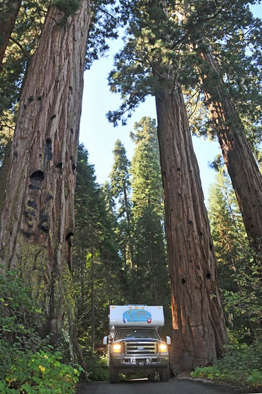 Sequoia-National-Park-California