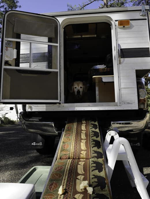 Three Goldens To Alaska Truck Camper Magazine